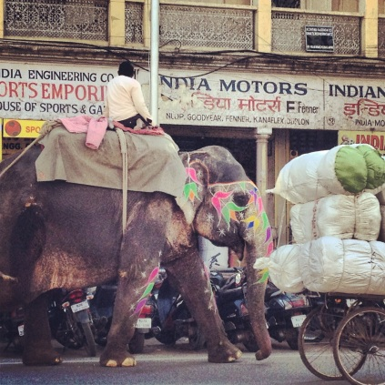 Afternoon traffic in Jaipur.